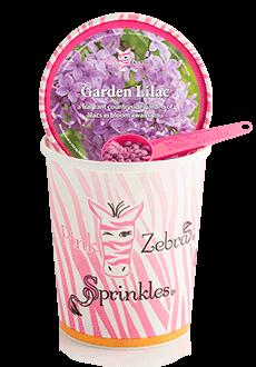 Garden Lilac 16oz. Carton Sprinkles