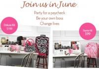 Join in June and Start Your Own Pink Zebra Business!