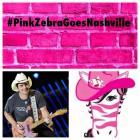 Pink Zebra Reunion 2014 Video