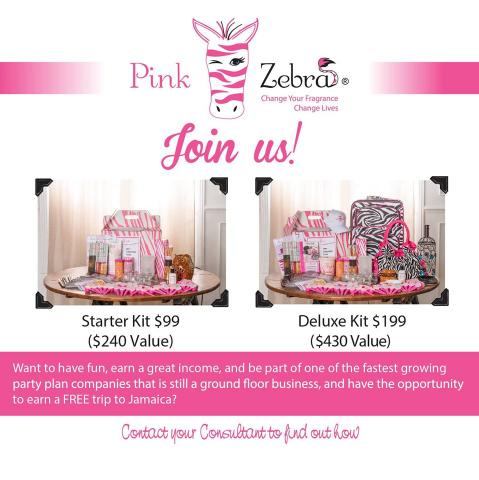 Pink Zebra Consultant Kits